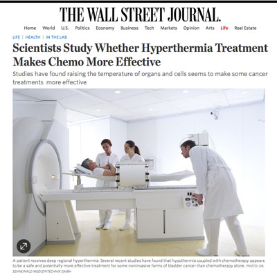 Wall Street Journal Article
